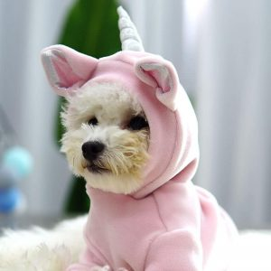 Reusable Unicorn Lovely Cloth For Your Dog