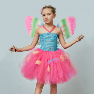 Bright Rainbow Fairy Girls Tutu Dress with Butterfly Wing