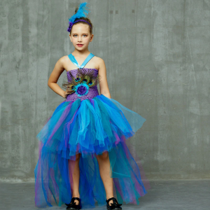 Fancy Peacock Feather Girl Pageant Tutu Dress With Headband