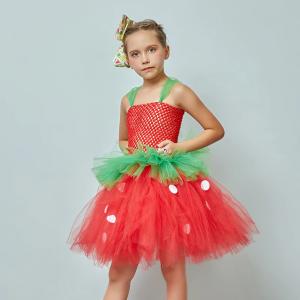 Strawberry Sweetie Children Fancy Tutu Dress